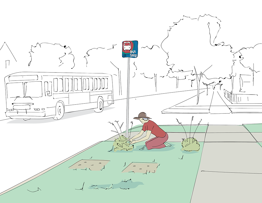 Sketch of a woman planting a bush at a bus stop sign
